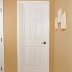 6-Panel-Int-Door